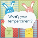 What is your temperament ?