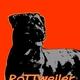 Descarga fondos Rottweiler